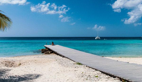 Vele gehandicapten vakanties binnen en buiten de EU   600×350-Curacao-Stijger.jpg   Vele gehandicapten vakanties binnen en buiten de EU