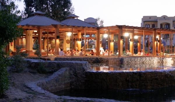 Vele gehandicapten vakanties binnen en buiten de EU   600×350-Egypte-Rihana-Resort-Chez-Pascal.jpg   Vele gehandicapten vakanties binnen en buiten de EU