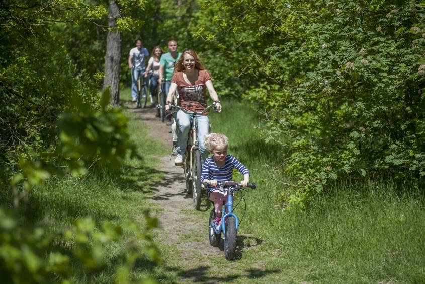 Vele gehandicapten vakanties binnen en buiten de EU | NL-Den-haag-Kijkduin-bos.jpg | Vele gehandicapten vakanties binnen en buiten de EU